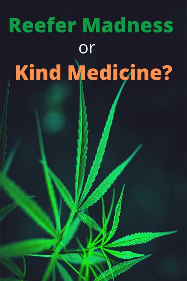 Reefer Madness or Kind Medicine? Medical Marijuana