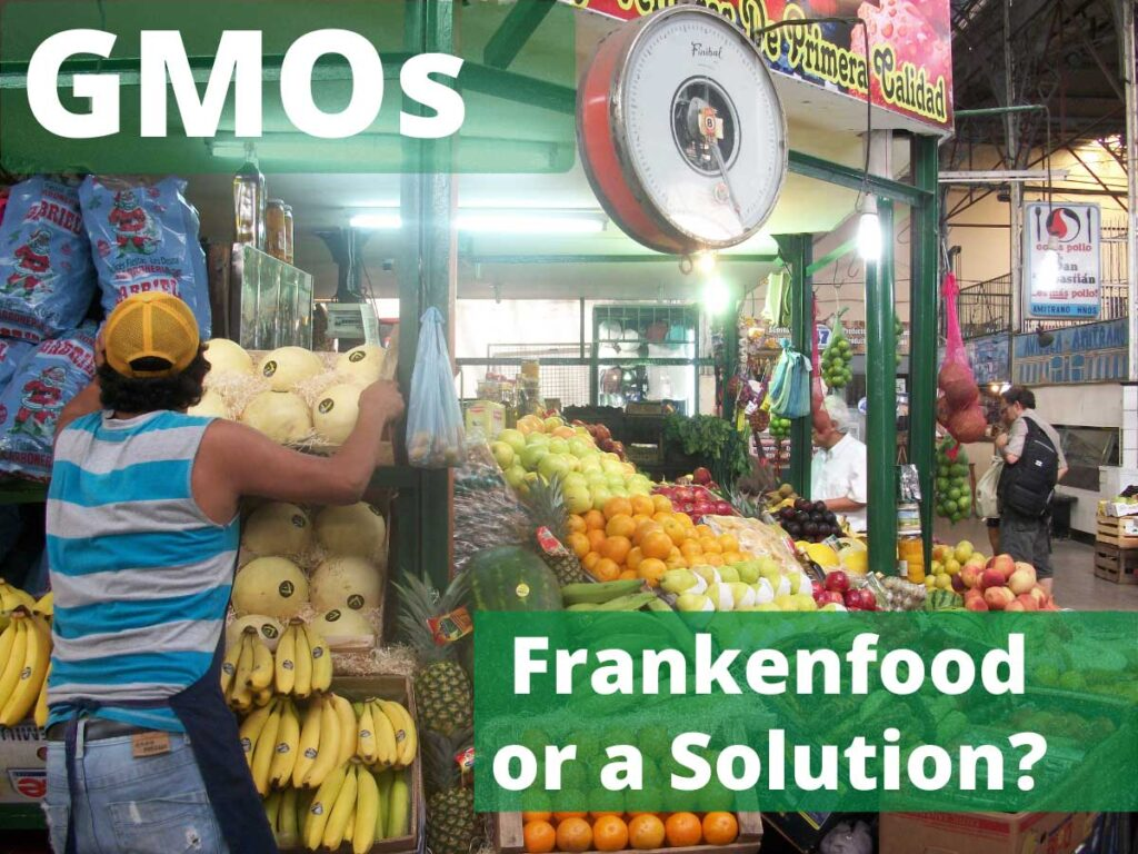 Vegetable stand with words GMOs Frankenfood or Solution